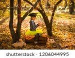 girl in halloween holiday is... | Shutterstock . vector #1206044995
