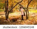 girl in halloween holiday is... | Shutterstock . vector #1206045148