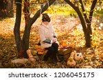 girl in halloween holiday is... | Shutterstock . vector #1206045175