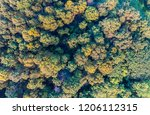 aerial top down view of... | Shutterstock . vector #1206112315