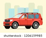 car with driver afro american... | Shutterstock .eps vector #1206159985