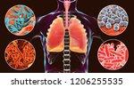 human respiratory pathogens  3d ... | Shutterstock . vector #1206255535
