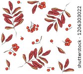 seamless pattern with rowan and ... | Shutterstock .eps vector #1206303022