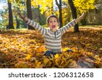 happy little boy in the autumn... | Shutterstock . vector #1206312658
