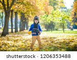golden autumn background with... | Shutterstock . vector #1206353488