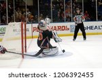 uniondale  new york  united...   Shutterstock . vector #1206392455