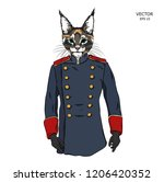 portrait of a cat old military... | Shutterstock .eps vector #1206420352
