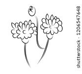 line drawing of flowers  nature ... | Shutterstock .eps vector #1206547648