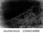 spiderwebs isolated on black... | Shutterstock . vector #1206616888