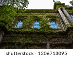 wall of the castle grown with... | Shutterstock . vector #1206713095