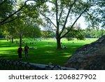 central park  manhattan new... | Shutterstock . vector #1206827902
