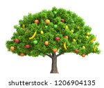 fruits tree isolated on white...   Shutterstock . vector #1206904135