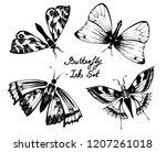 nifty gentle hand drawn...   Shutterstock .eps vector #1207261018