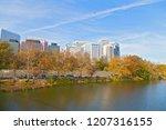 urban landscape on early... | Shutterstock . vector #1207316155