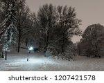 Beautiful Night Winter...