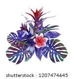 tropical plant. watercolor... | Shutterstock . vector #1207474645