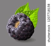 blackberry with a leaves and... | Shutterstock .eps vector #1207718158