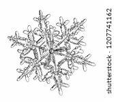 snowflake isolated on white... | Shutterstock .eps vector #1207741162