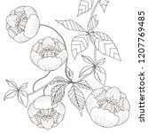 coloring pages. coloring book...   Shutterstock .eps vector #1207769485