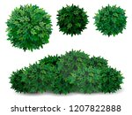 Vector Bush In Different Forms...
