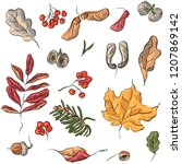seamless pattern with autumn... | Shutterstock .eps vector #1207869142