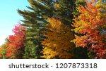 breathtaking view of idyllic... | Shutterstock . vector #1207873318