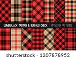 lumberjack tartan and buffalo... | Shutterstock .eps vector #1207878952