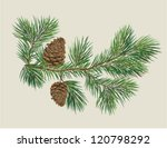 branch of christmas tree with... | Shutterstock .eps vector #120798292