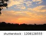sundown from pantanal....   Shutterstock . vector #1208128555
