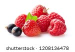 ripe berries in closeup | Shutterstock . vector #1208136478