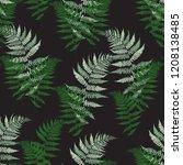 fern frond herbs  tropical... | Shutterstock .eps vector #1208138485