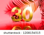 gold isolated number 30 on red... | Shutterstock . vector #1208156515