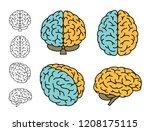 human brain anatomy. set of...   Shutterstock .eps vector #1208175115