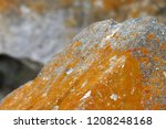 mossy rocks  moss on the north... | Shutterstock . vector #1208248168
