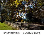 lush landscape of the south of... | Shutterstock . vector #1208291695