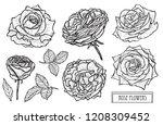 decorative rose flowers set ... | Shutterstock .eps vector #1208309452