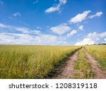 beautiful field with dirt road... | Shutterstock . vector #1208319118
