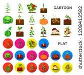 plant  vegetable cartoon icons...