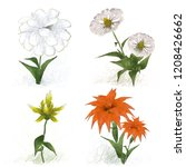 2d illustration. decorative... | Shutterstock . vector #1208426662