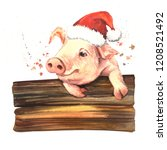watercolor funny new year pig....   Shutterstock . vector #1208521492