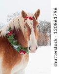 Christmas Horse   A Blond...