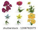 2d illustration. decorative...   Shutterstock . vector #1208782075