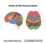 functional areas of the... | Shutterstock .eps vector #1208805658