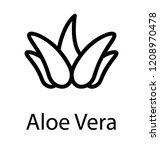 succulent plant aloe vera  | Shutterstock .eps vector #1208970478