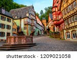 colorful half timbered houses...   Shutterstock . vector #1209021058