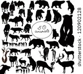 Stock vector set animals it is isolated on a white background 120902128