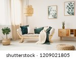 stylish sofa with grey and... | Shutterstock . vector #1209021805