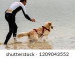 italy  macerata   21 october... | Shutterstock . vector #1209043552