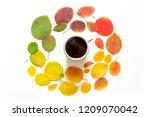 autumn concept. colorful autumn ...   Shutterstock . vector #1209070042