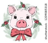 Pig In A Christmas Wreath....